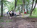 Varnhem innan munkarna kom, den 13 juni 2007, bild 32.jpg
