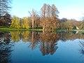 Vedere Parcul Nicolae Romanescu.jpg