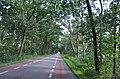 Veluwe - 2015 - panoramio (33).jpg