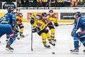 Vienna Capitals vs Fehervar AV19 -75.jpg
