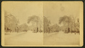 View of a snow street, Saco, Maine, by Sawtelle, E. E. (Edward E.).png