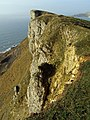 View west along Gad Cliff - geograph.org.uk - 645118.jpg