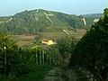 Vin-agre - panoramio.jpg