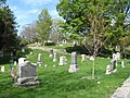 Vine Lake Cemetery, Medfield MA.jpg