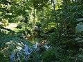 Vitrupes ieleja (2).jpg