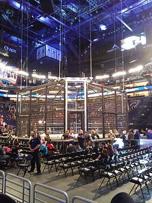 Elimination Chamber (2017) - The redesigned Elimination Chamber structure introduced at the event.