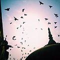 Wazir Khan Domes.jpg