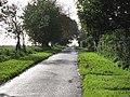 Welborne Common - geograph.org.uk - 294562.jpg