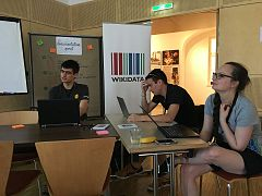 Wikimedia Hackathon 2017 - documentation sprint - constraint reports.jpg