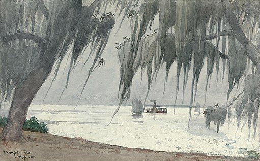 Winslow Homer - Spanish moss at Tampa (1886)