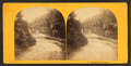 Wissahickon Lane, from Robert N. Dennis collection of stereoscopic views.png
