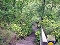 Woolsthorpe, steps on the Skillington footpath - geograph.org.uk - 1468904.jpg