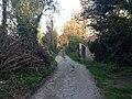 Worthing, UK - panoramio (117).jpg