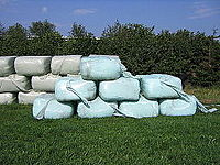 A stack of plastic-wrapped silage bales