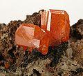 Wulfenite-Quartz-184784.jpg