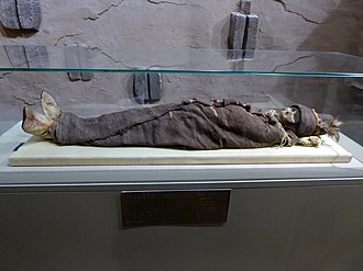 Tocharians - One of the Tarim mummies