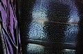 Xylocopa balck violetwing, f, kyrgystan, face 2014-08-09-18.39.14 ZS PMax (15122536862).jpg