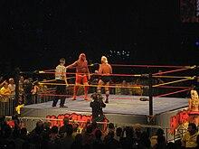 Hulk Hogan datant histoire