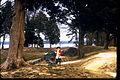 Yorktown Battlefield (Part of Colonial National Historical Park) YORK0009.jpg