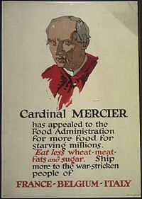 """""""Cardinal Mercier has appealed to the Food Administration for more food for starving millions. Eat less wheat- meat... - NARA - 512580"""