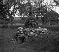 """""""Terivna jama""""- zapuščena, Velike Češnjice 1950.jpg"""