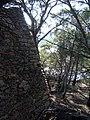 Île du Levant. Tour du Titan. Ruine mur attenant.jpg