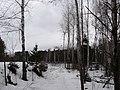 """В окрестностях станции """"Нижняя Курья"""" (слева ветка на Березовую рощу) - panoramio.jpg"""