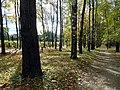 """В парке """"Швейцария"""" (осенний пейзаж).JPG"""