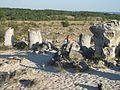Каменный лес - panoramio - sasa4250 (3).jpg
