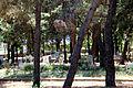 Кладбище Бельдиби.JPG