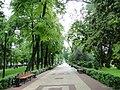 Кольцовский сквер - panoramio.jpg