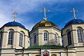 Куполи Троїцької церкви с.Межиріч.jpg