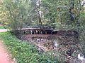 Осенний мост.JPG