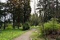 Сирецький дендрологічний парк 10.jpg