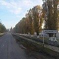 Станица Ассиновская.jpg