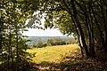 """С.Чугалі. Національний природний парк «Кременецькі гори""""..jpg"""