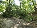 Украина, Киев - Голосеевский лес 190.jpg