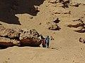 جبل نقلون مدينة الفيوم الجديدة 44.jpg