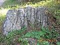 寿县八公山国家森林公园景色 - panoramio (23).jpg