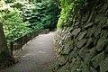東高根森林公園 - panoramio (39).jpg