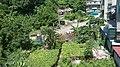 民安里 Minan Village - panoramio.jpg