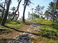 碁石岬灯台Goisi-misaki toudai - panoramio.jpg