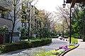 蚕糸の森公園入口緑道 A Green Path at the Entrance of Sanshi no Mori Park - panoramio.jpg