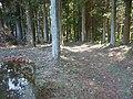 諏訪郡富士見町立沢地区(旧稗之底村址入り口)付近 - panoramio.jpg