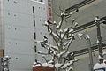 雪の札幌市街 (2310669580).jpg
