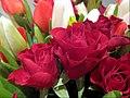 0001 Image Blumen für die Frau Lupus in Saxonia.jpg