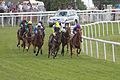 013f - Epsom Derby Day 2015 - Investec Woodcote Stakes - field rounding Tattenham corner (18401843010).jpg