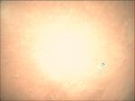 09-349.43.34 VMC Img No 8 (8269428998).png