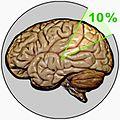 10 % brain myth.jpg