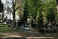 1352viki Cmentarz żydowski przy ul. Lotniczej. Foto Barbara Maliszewska.jpg